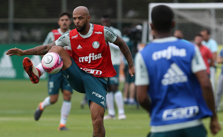 Palmeiras joga com folga no Allianz Parque contra o Novohorizontino