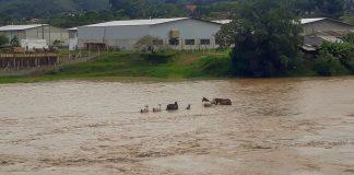 Enchente em brusque