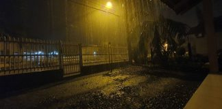 temporal brusque