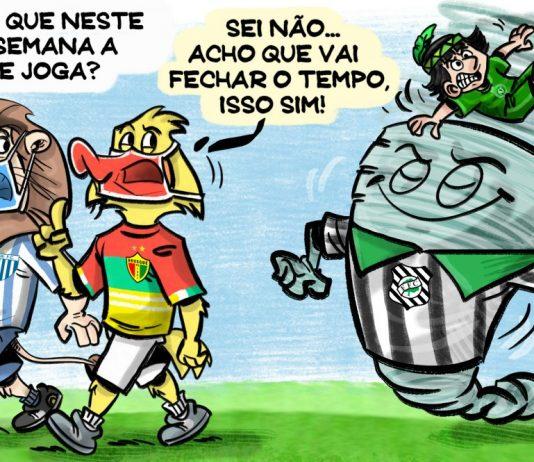 Catarinense Brusque Figueirense Avaí Chapecoense
