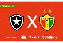 Botafogo x Brusque Série B ao vivo tempo real minuto a minuto lance a lance jogo do brusque rodada